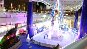 Ice rink in Oasis 21