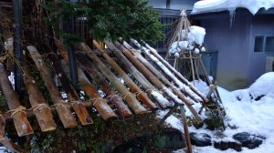 Bushes and flowers are covered by planks and stick huts to protect them from being crushed in snow