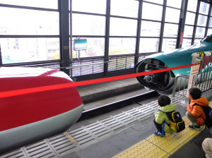At Morioka, the Akita shinkansen train joins the mainline Hayabusa