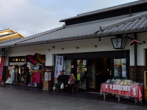 Before Himeji castle