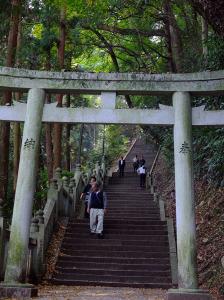 Steps steps steps