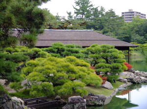 Pond side teahouse
