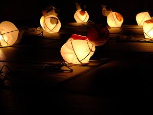 Suitouro cat lanterns